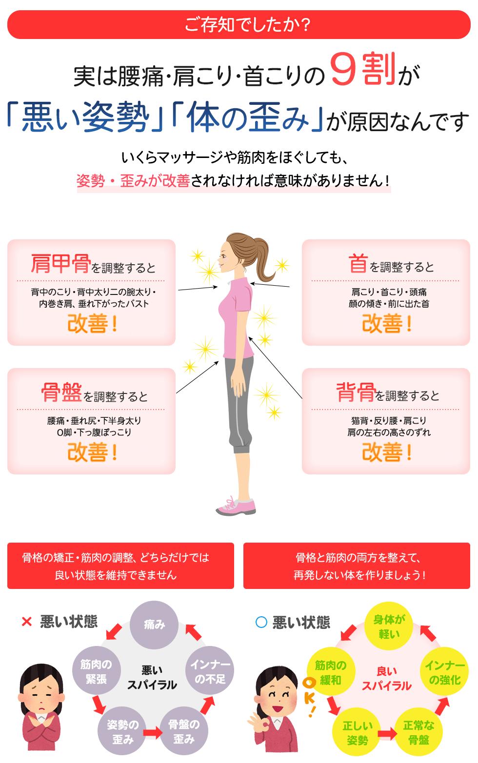 腰痛、肩こりの本当の理由
