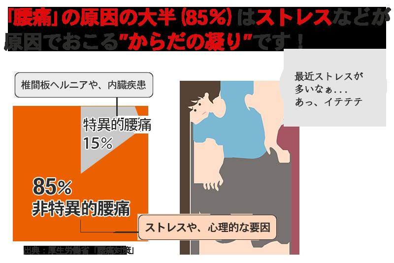 腰痛の本当の原因